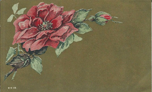 Roses1910
